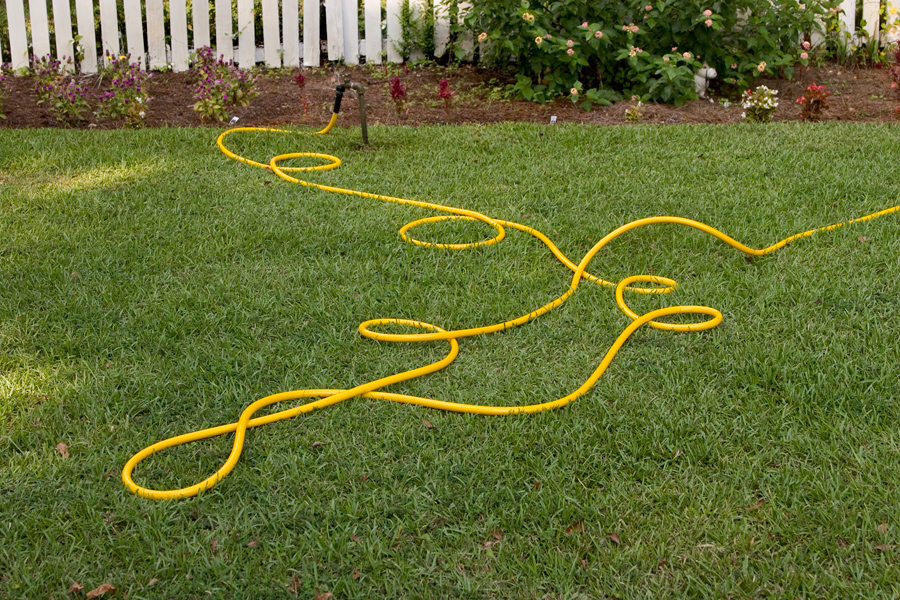 yellow.hose_5469p